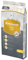 Eminent Energy