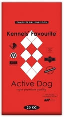 Kennels` Favourite Active Dog