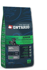 Ontario Junior Large Breed