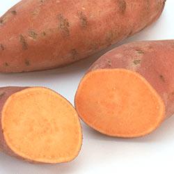 Sladké brambory (batáty)