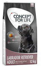Concept for Life Labrador retriever